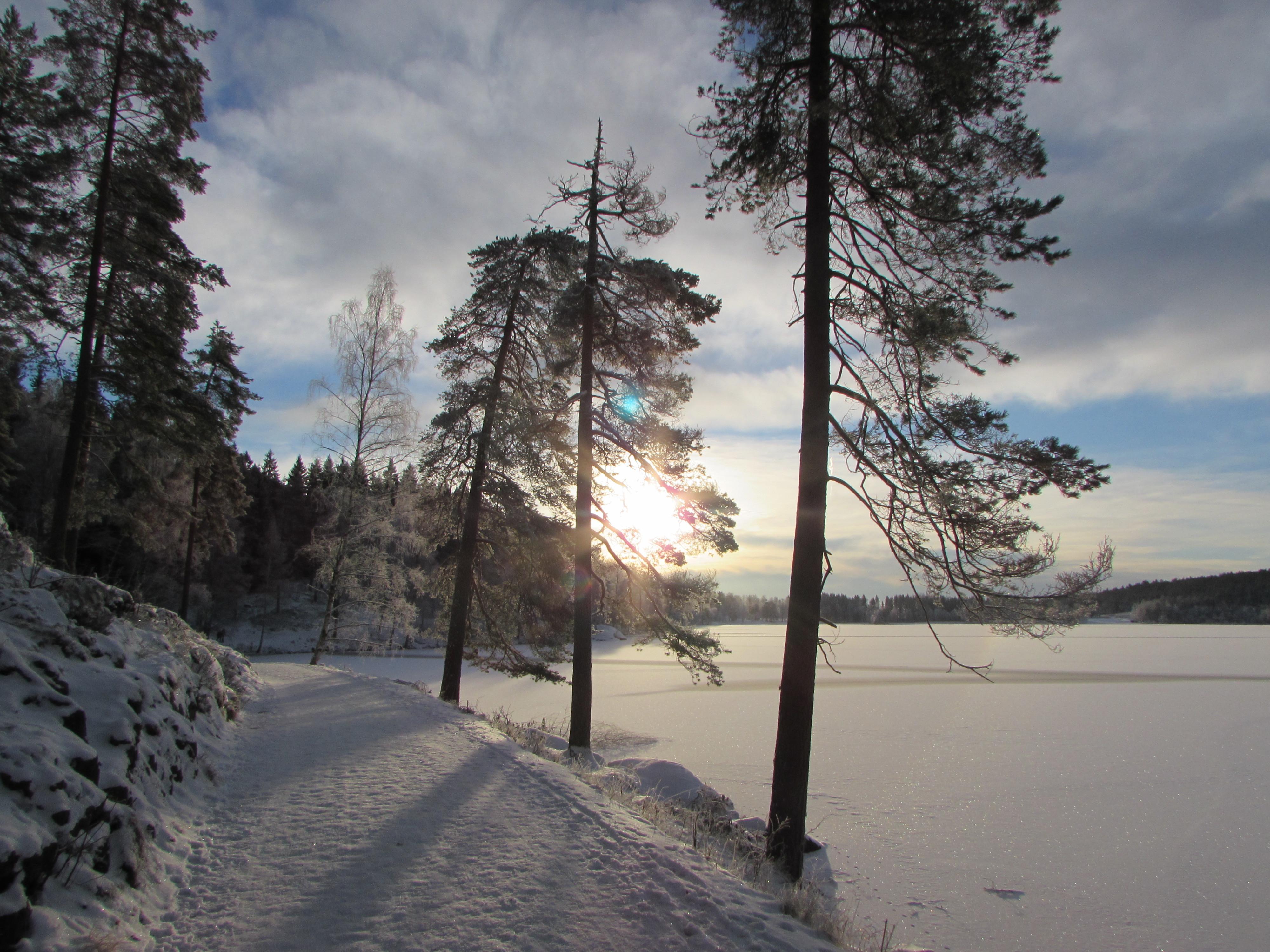 Vinter i Oslo 5